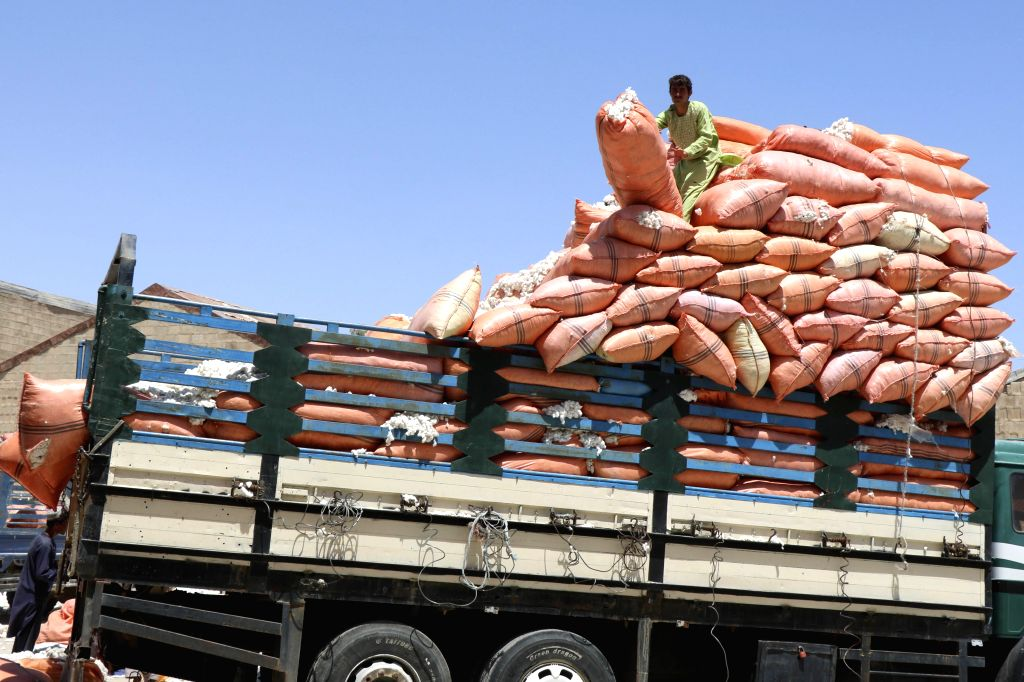 LASHKAR GAH (AFGHANISTAN), July 14, 2020 An Afghan man unloads cotton from a truck at a cotton-processing factory in Lashkar Gah, capital of Helmand province, southern Afghanistan, July ...