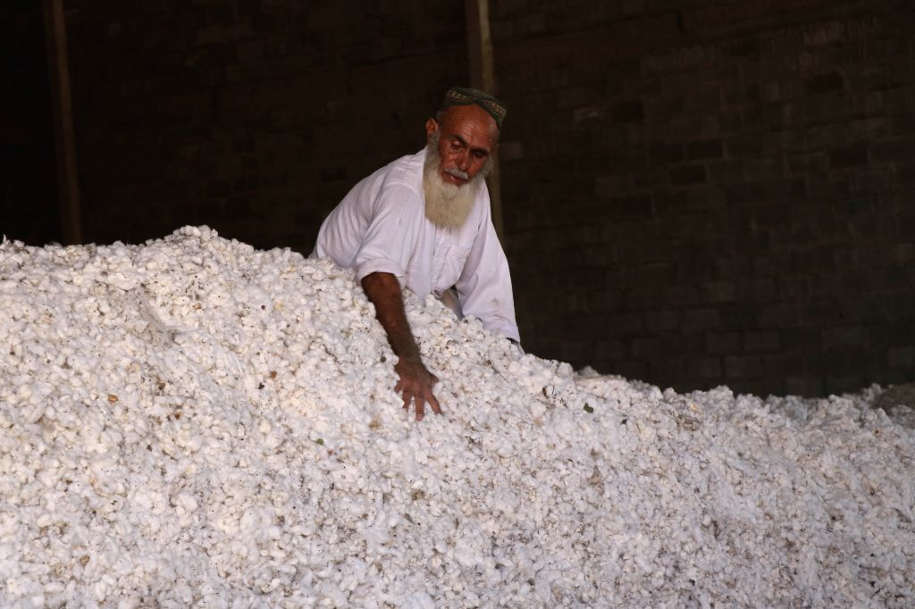 LASHKAR GAH (AFGHANISTAN), July 14, 2020 An Afghan man works at a cotton-processing factory in Lashkar Gah, capital of Helmand province, southern Afghanistan, July 13, 2020. The ...