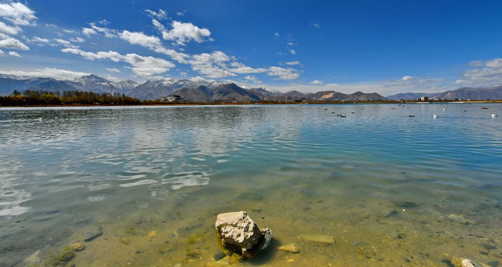 LHASA, April 8, 2019 - Photo taken on April 7, 2019 shows Lhalu wetland in Lhasa, southwest China's Tibet Autonomous Region, on April 7, 2019. Lhalu wetland national nature reserve, with an altitude ...