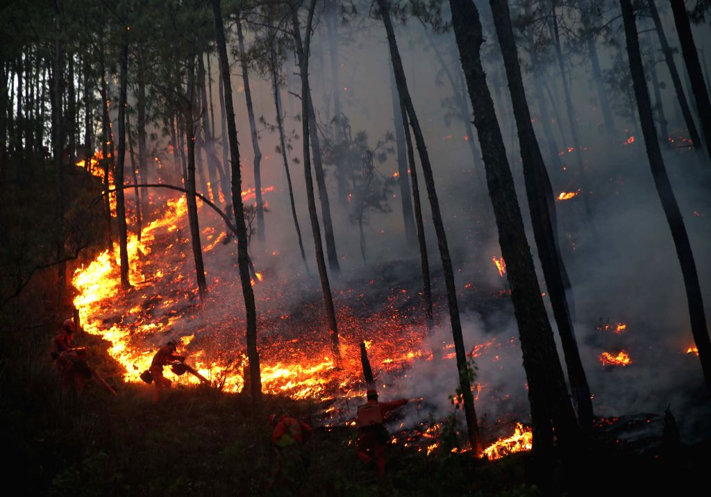 Fire fighters try to extinguish a fire raging through the forest at Changbanqiao Village of Anha Township in Xichang, southeast China's Sichuan Province, April ..