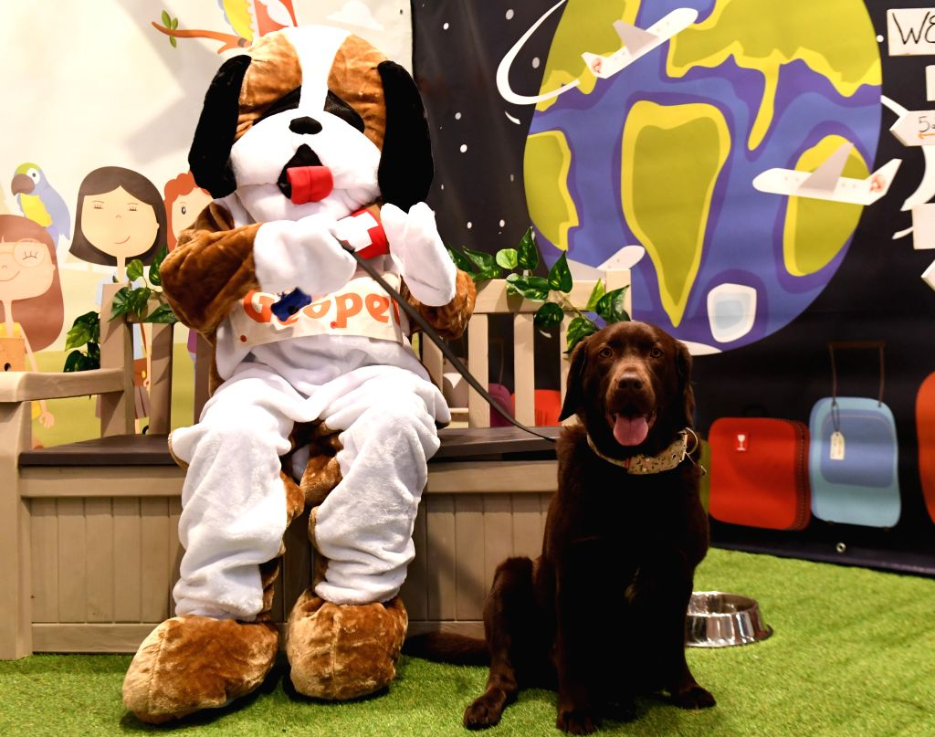LISBON, Feb. 2, 2019 - A dog owner in dog-shaped costume shows a pet dog on the Lisbon Pet Show in Lisbon, Portugal, Feb. 1, 2019. The 2019 Portuguese Pet Show was held here from Feb. 1 to Feb. 3.
