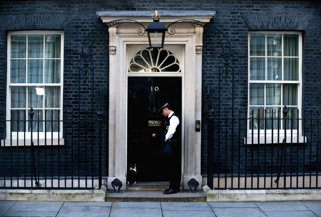LONDON, June 24, 2016 - Larry the cat is seen outside 10 Downing Street in London, Britain on June 24, 2016.