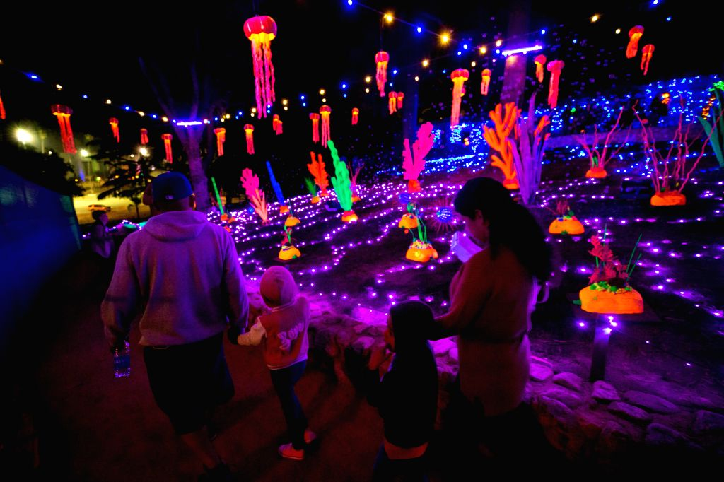 """LOS ANGELES, Oct. 15, 2019 - People view exhibits at """"Pumpkin Night"""" in Los Angeles, the United States, on Oct. 14, 2019."""