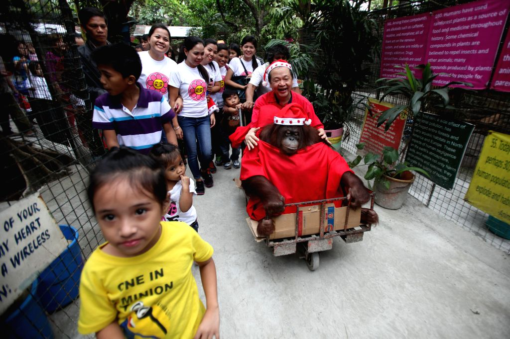 """Children walk with an orangutan dressed in Santa Claus costume during the """"Animal Christmas Party"""" inside a zoo in Malabon City, the Philippines on .."""