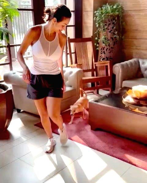 Malaika Arora shares her 'daily shenanigans' (Credit: Instagram) - Malaika Arora