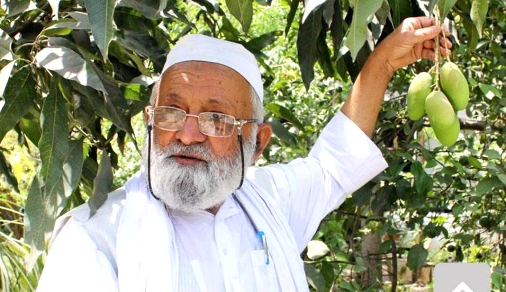 Malihabad: Celebrated mango grower, Haji Kalimullah, popularly known as 'Mango Man', shows the new variety of mangoes that he has named after Union Home Minister Amit Shah, in Uttar Pradesh's Malihabad on June 14, 2019. (Photo: IANS) - Amit Shah