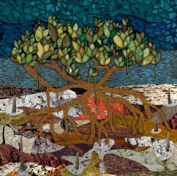 mangrove story