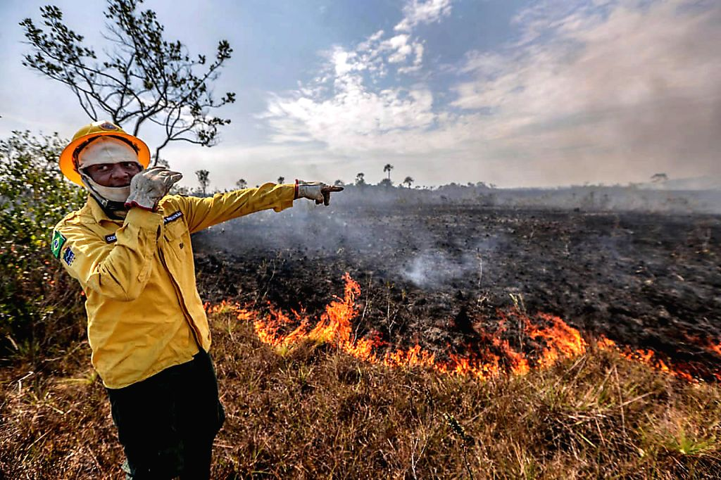 MANICORE, Aug. 28, 2019 - A worker of the Brazilian Institute of the Environment and Renewable Natural Resources points at the damage caused by a fire in Manicore, the state of Amazonas, Brazil on ...