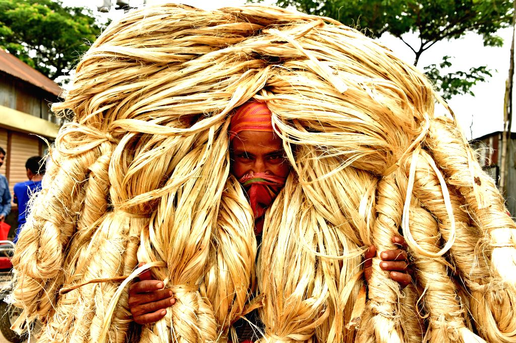 """MANIKGANJ, Aug. 3, 2019 - A laborer carries bundles of jute at a wholesale market in central Bangladesh's Manikganj district on July 31, 2019. Jute is still considered the """"golden fiber"""" in ..."""