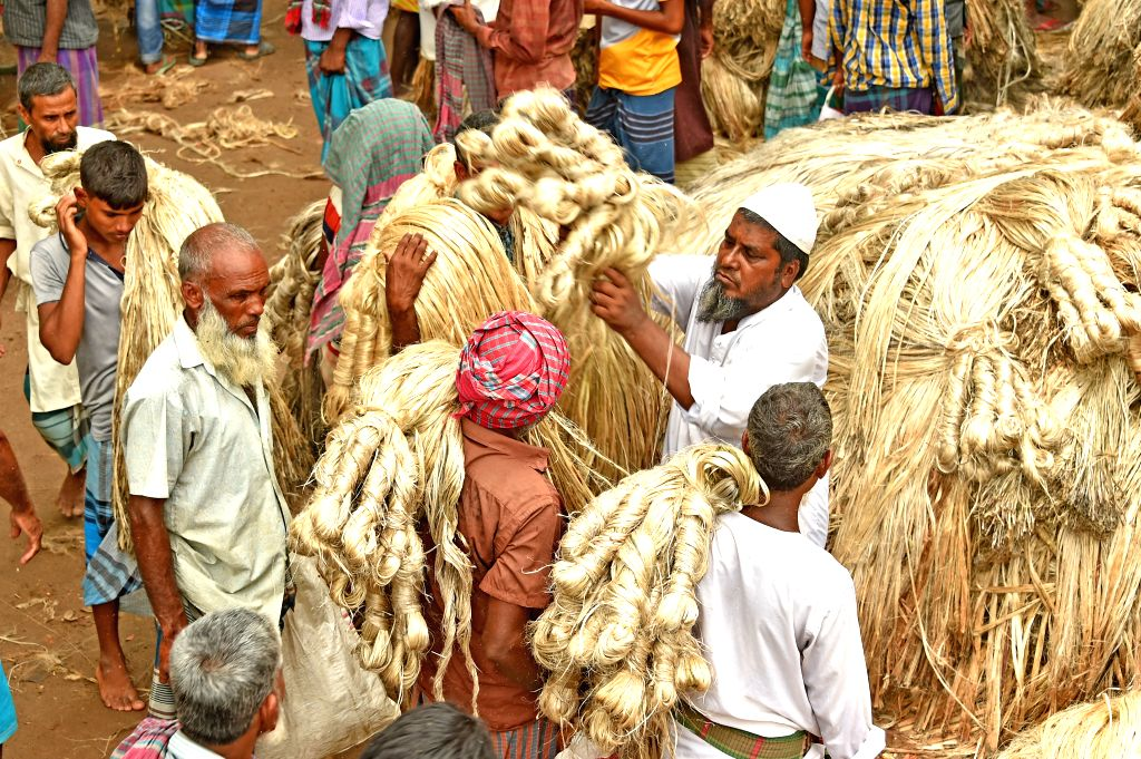 MANIKGANJ, Aug. 3, 2019 - Photo taken on July 31, 2019 show farmers with bundles of newly-harvested jute arriving in a wholesale market in central Bangladesh's Manikganj district. Jute is still ...