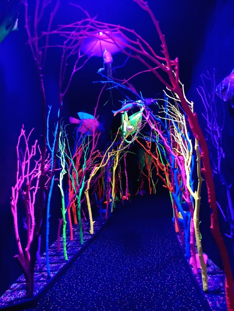 Meow Wolf: The house of eternal return.