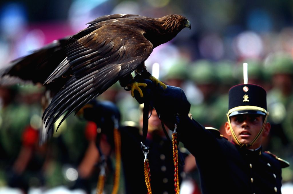 MEXICO CITY, Sept. 16, 2017 - A cadet of the Heroic Military Academy of Mexico holds an eagle during the military parade held to commemorate Mexico's Independence Day at the Zocalo Square in Mexico ...