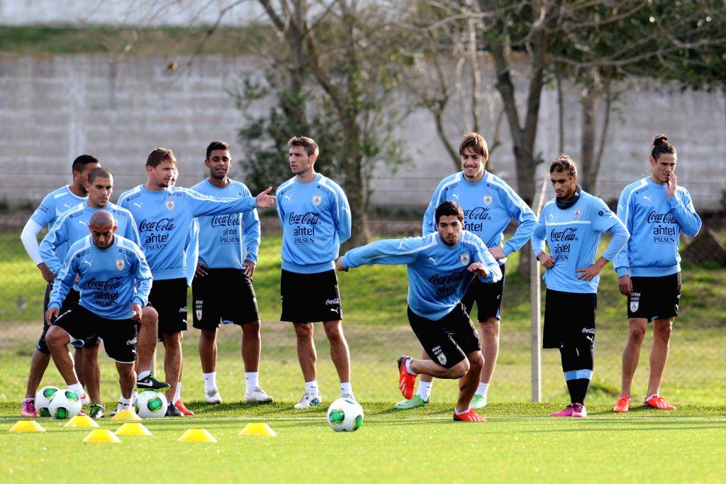 Trainer Uruguay