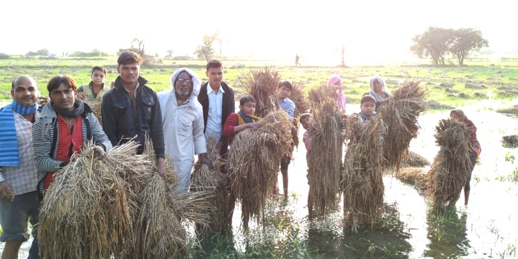 More than two hundred bigha fields of crops were inundated with water from the canal during the national level workshop organised by the Bundelkhand Development Board at the Agricultural University ...