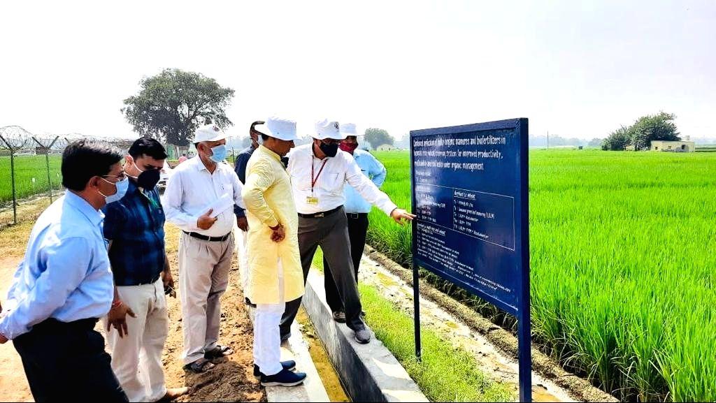 MOS Kailash Chaudhary on organic farming - Kailash Chaudhary