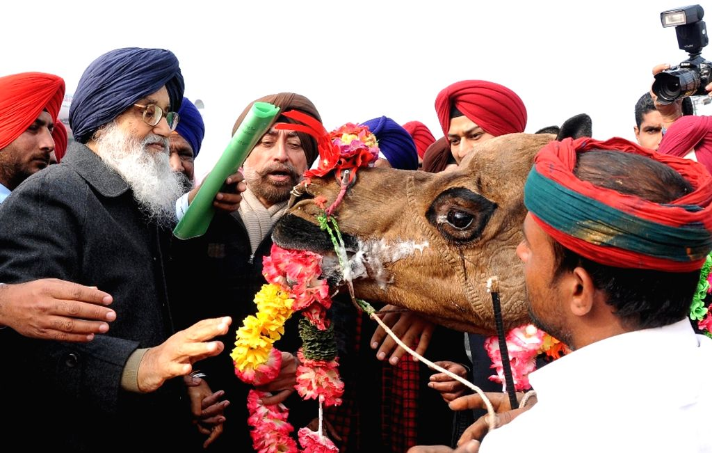 Punjab Chief Minister Parkash Singh Badal during National Livestock Championship and Livestock Expo-2015 in Muktsar, Punjab on Jan 12, 2015. - Parkash Singh Badal