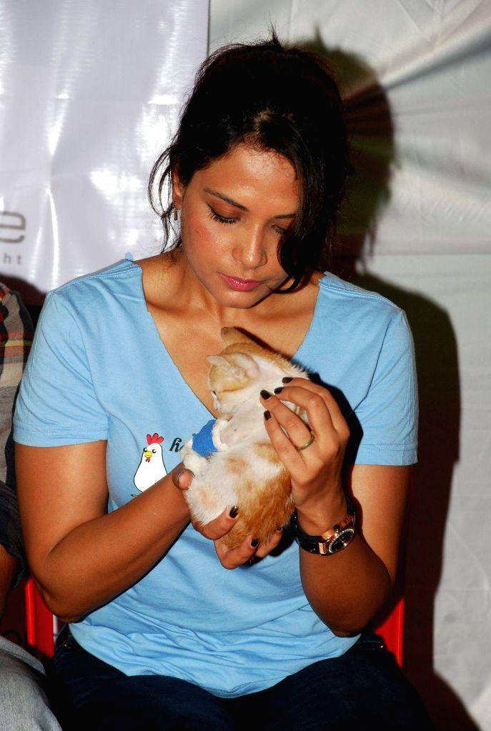 Actor Richa Chadda at Pet Adoption Camp in Mumbai, on November 23, 2014.