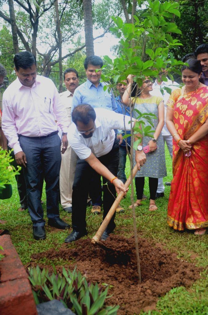 Mumbai Mayor Vishwanath Mahadeshwar plants a sapling during a plantation programme organised across the city; in Mumbai on July 1, 2017.