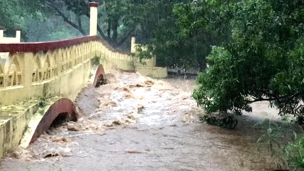 Mumbai: Water from Mithi river floods Sanjay Gandhi National Park in Mumbai's Borivali East on Aug 3, 2019. (Photo: IANS)