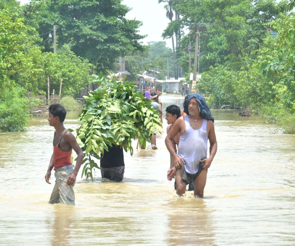 Muzaffarpur: People move to higher lands from flood hit areas of Aurai block of in Muzaffarpur district of Bihar on July 15, 2019. (Photo: IANS)