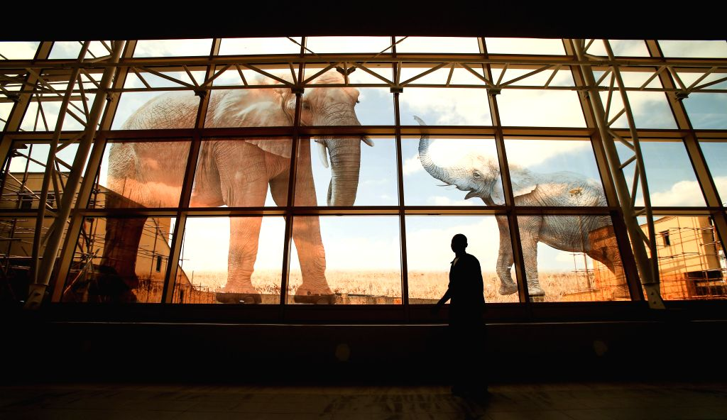 A man walks past the window with elephant pattern at the new terminal of Jomo Kenyatta International Airport (JKIA) in Nairobi, capital of Kenya, July 4, 2014. The ..