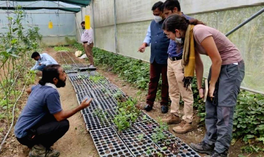 Natural farming.