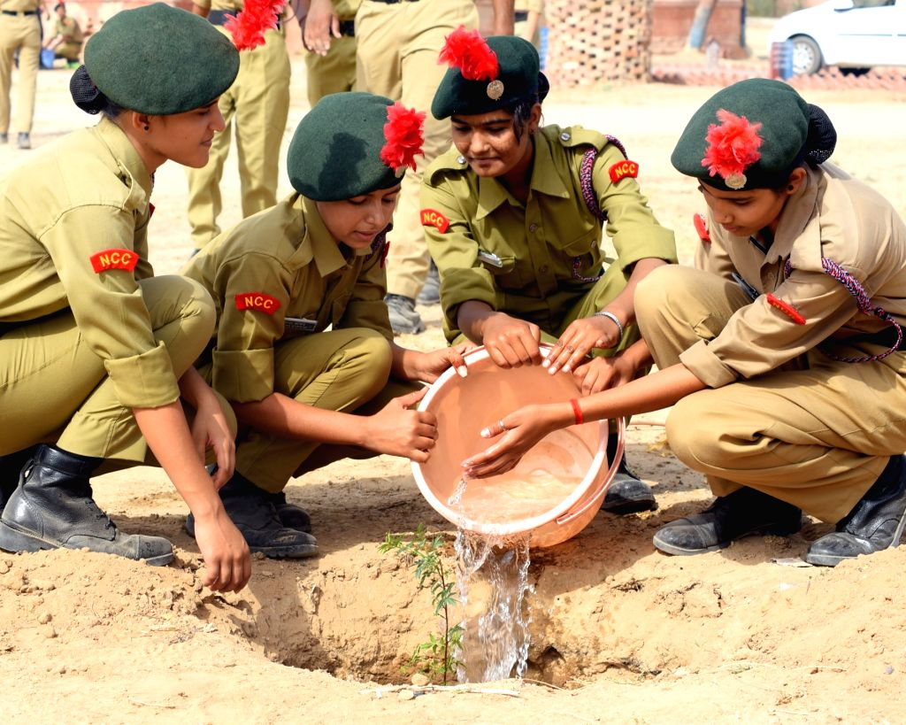 NCC cadets water a sapling that they planted on World Environment Day in Bikaner on June 5, 2018.