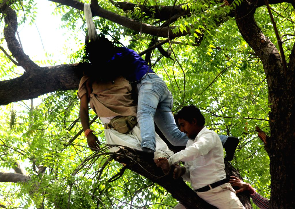 A farmer attempts suicide by hanging himself from a tree at an AAP rally at Jantar Mantar  in New Delhi, on April 22, 2015.