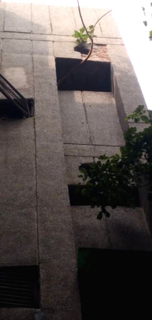New Delhi, Nov 25 (IANS) What would you do if you buy a flat worth Rs 6-7 cr of market value in one of the prime real estate markets of Delhi, but end up having a peepal tree hollowing its foundation? What would you do if that humble tree is weakenin