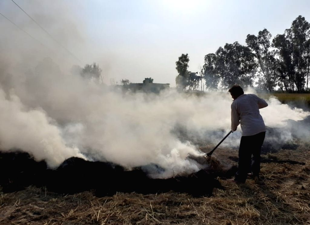 New Delhi: Stubble being burned at an agricultural field on the outskirts of New Delhi on Oct 16, 2019. The Arvind Kejriwal-led Aam Aadmi Party government has been blaming the severe air pollution in Delhi on these stubble burning activity. Since the - The Arvind Kejriwal