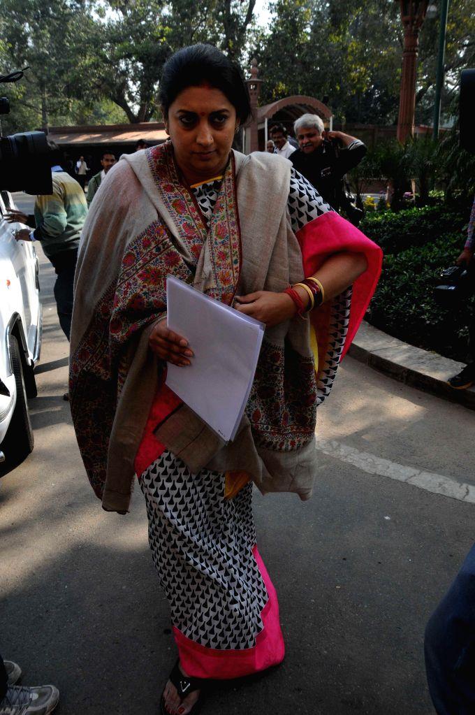Union HRD Minister Smriti Irani at the Parliament premises in New Delhi, on Nov 25, 2014. - Smriti Irani