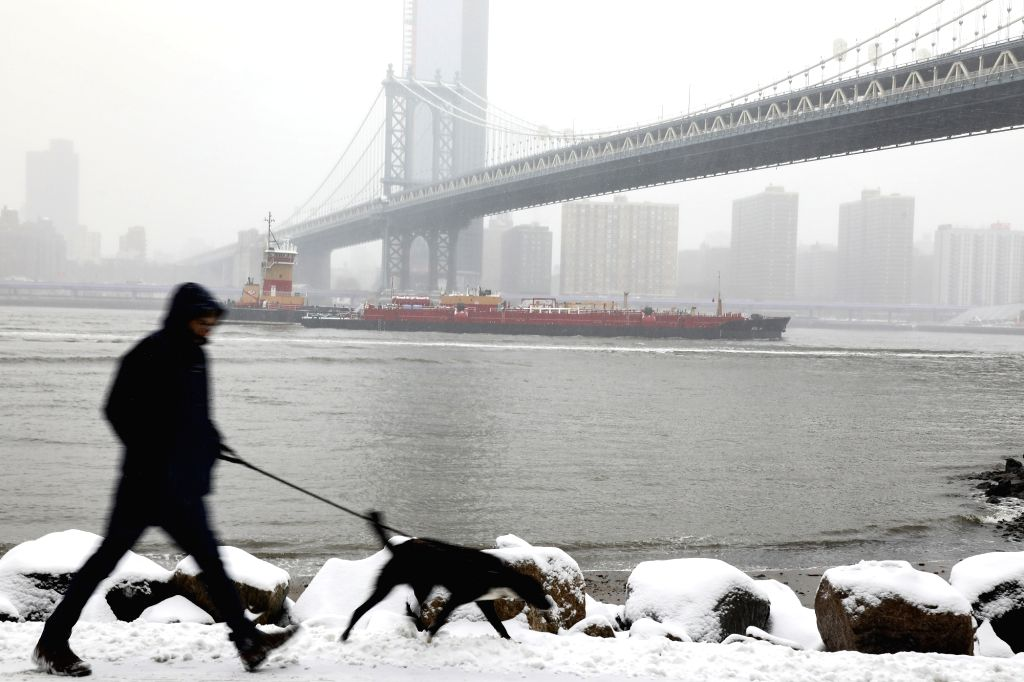 NEW YORK, Feb. 20, 2019 - A man walks a dog in the snow in New York, the United States, Feb. 20, 2019. More than 1,000 flights were canceled in airports across the United States Wednesday as a snow ...
