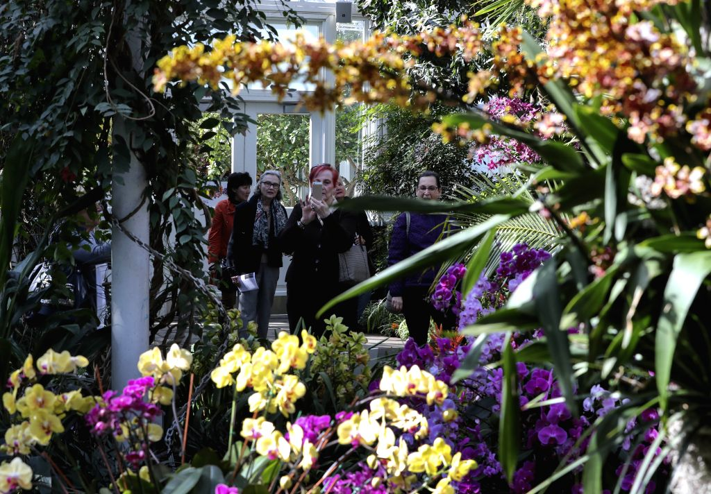 NEW YORK, Feb. 28, 2017 - Visitors look at orchids at the Orchid Show in New York, the United States, on Feb. 28, 2017. The Orchid Show celebrates its 15th year at the New York Botanical Garden with ...