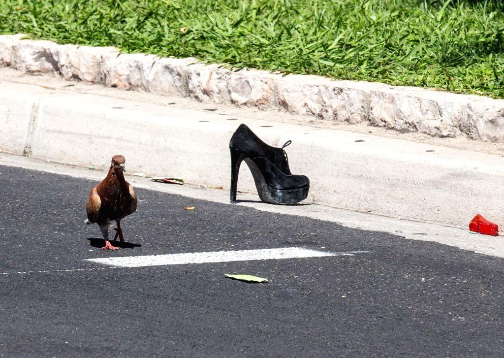 NICE, July 15, 2016 - A dove walks past a victim's shoe at the site of the terrorist attack in Nice, France, July 15, 2016. The death toll rises to 84 from an attack in which a truck rammed into a ...