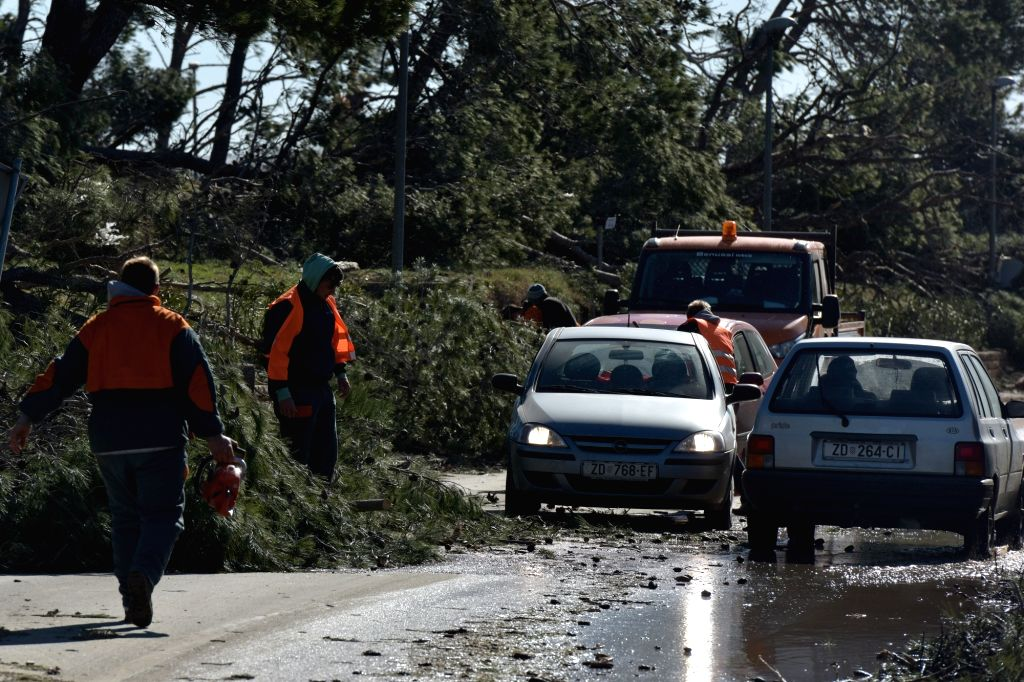 NIN (CROATIA), Feb. 23, 2019 Workers remove trees toppled by strong wind in Nin, Croatia, Feb. 23, 2019. Strong winds have swept across much of the Croatian Adriatic coast since Friday, ...