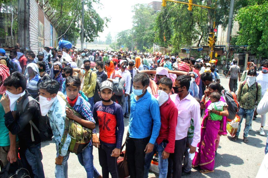 Nine in 10 migrants in Delhi consumed less food during lockdown: Survey