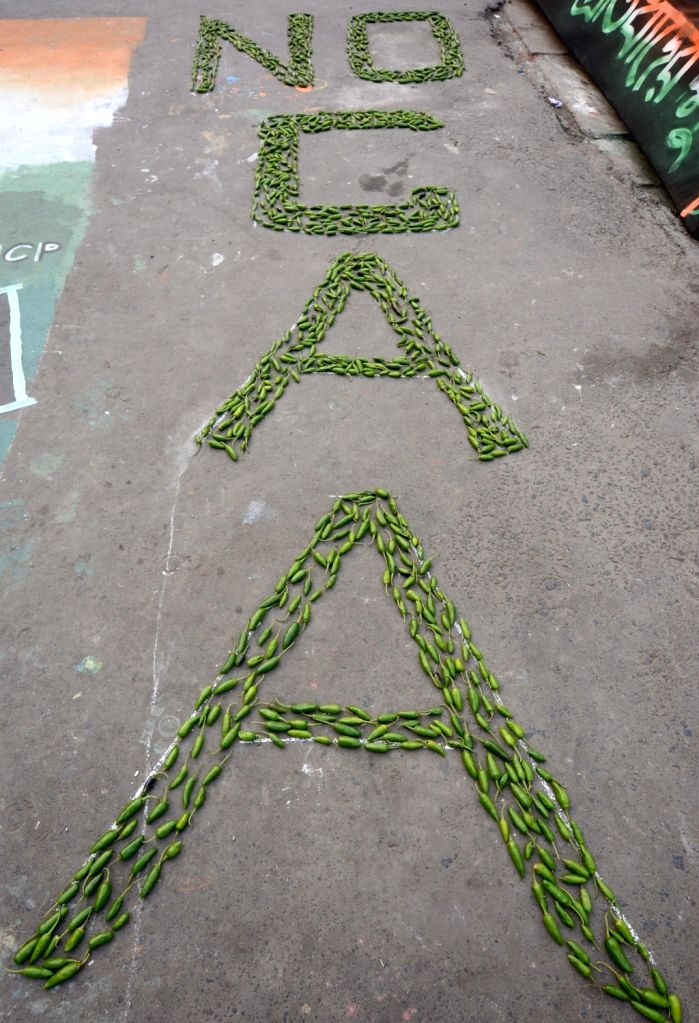 """NO CAA"""" written with vegetables at a Kolkata street-side during a demonstration against the Citizenship Amendment Act (CAA) 2019, National Register of Citizens (NRC) and National ..."""