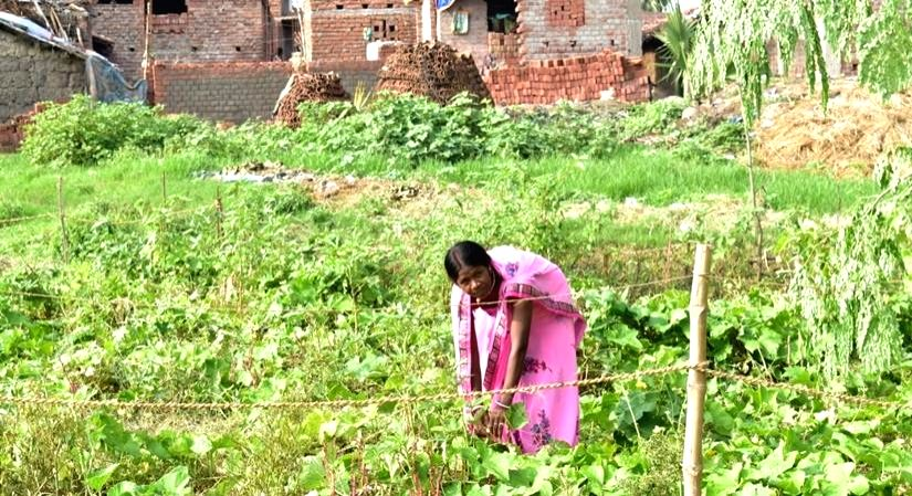 Nutrition Month: ing change in India's hinterland