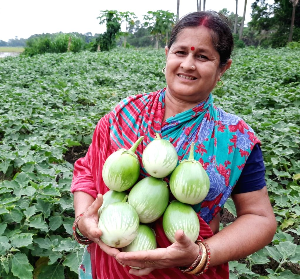 Odisha farmer distributes free vegetables, appeals on social media to help needy