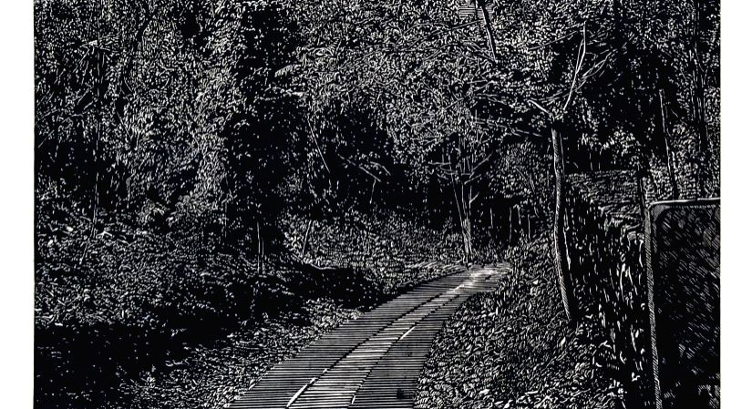 Of photorealism and treescapes. (photo:IANSLIFE)