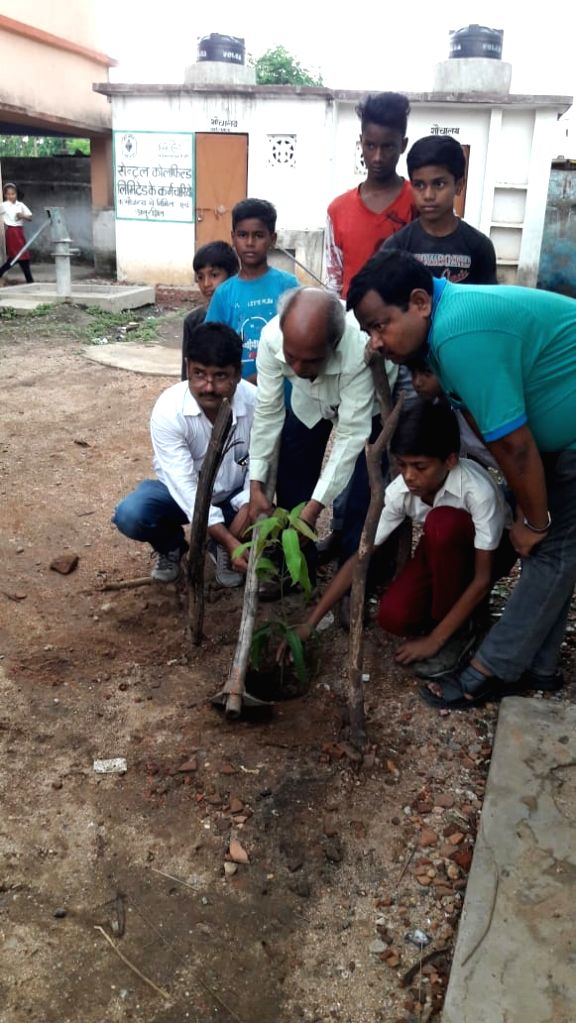 Officials planting saplings as part of a punishment.