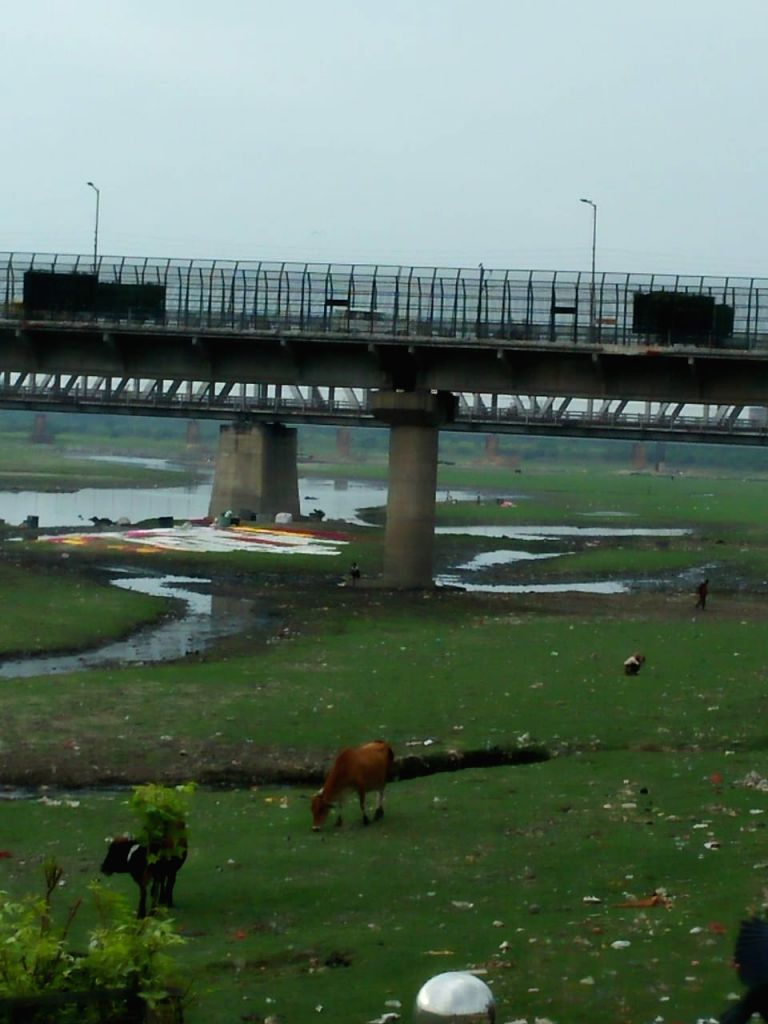 On World Rivers Day activists highlight pathetic state of river Yamuna in Taj city