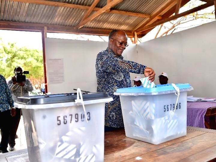 Over 29 mln Tanzanians head to polls