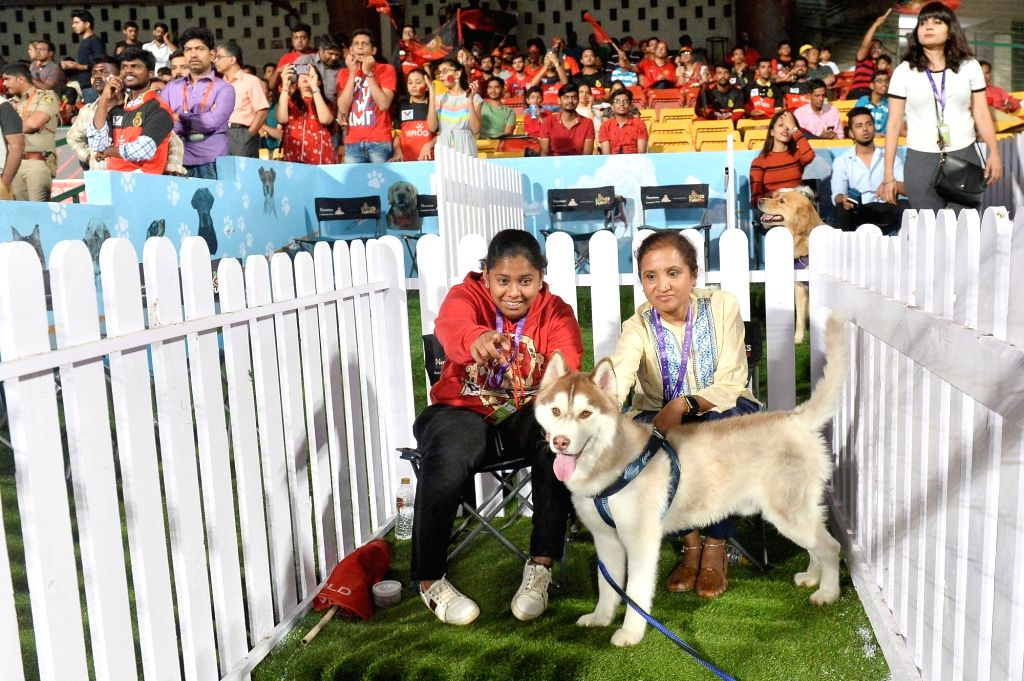 Owners of dogs along with their canine pets, who won the Royal Challengers Bangalore Loves Furry friends contest at Pet-lounge arranged during the 42nd match of IPL 2019 between Royal ...