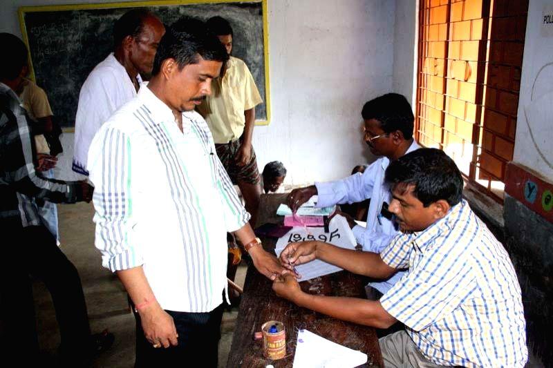 Panchayat election underway at Dhinkia village of Odisha, the proposed Posco site after several years of boycott on July 2, 2014. (Photo : Arabinda Mahapatra/IANS)