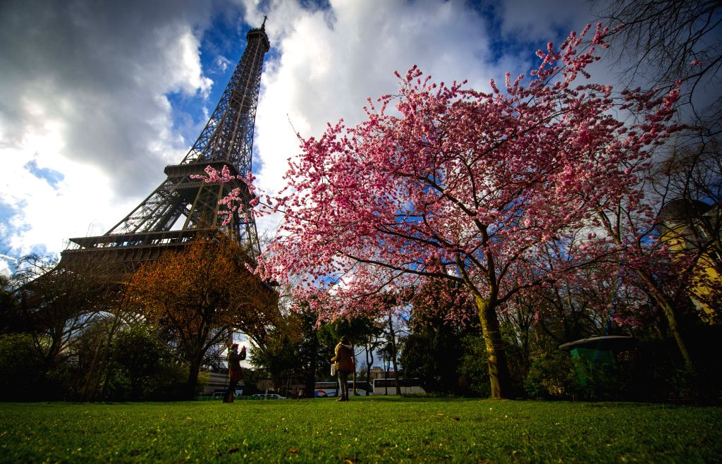 Tourists take photos at the Eiffel Tower in Paris, France, March 28, 2015. Tourists enjoy the scenery as the spring flowers blossom in Paris. (Xinhua/Chen ...