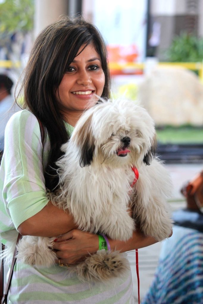 Participants during the International exhibition of dog show and pets in Hydrabad on Nov 26, 2016.