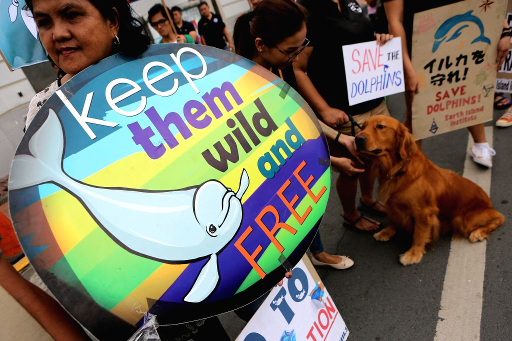 PASAY CITY, Sept. 2, 2018 - An environmental activist brings her pet dog as they hold placards against the Taiji dolphin hunt in Pasay City, Philippines, Sept. 2, 2018.