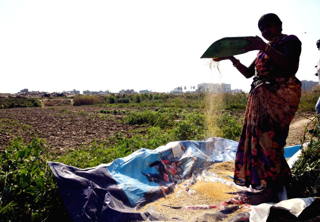 Patna: A lady busy working in a field near Patna on March 7, 2019.