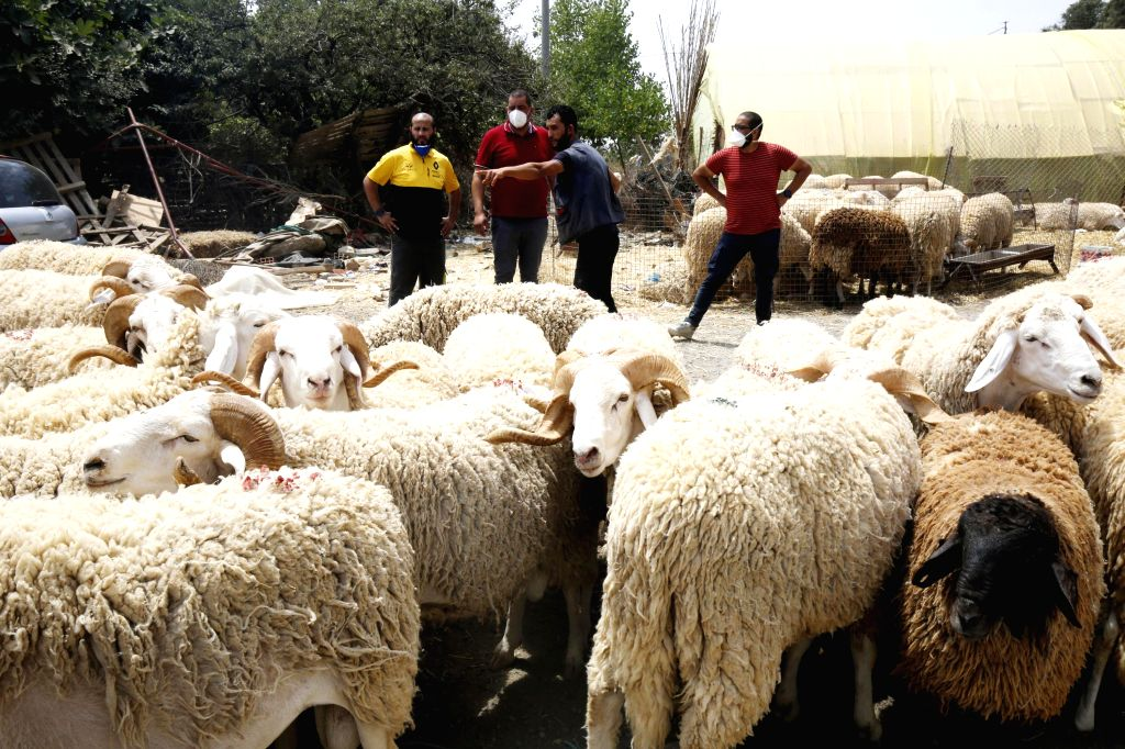 People are seen at a stall selling living sheep ahead of Eid al-Adha in Algiers, Algeria, on July 12, 2020.